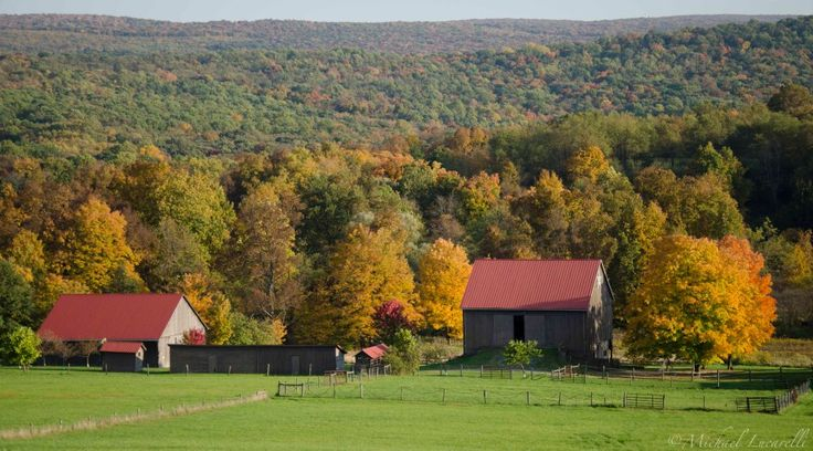 17 best images about barns still holding memories on for Home builders western pa