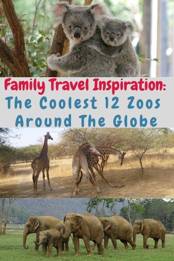 12 Unique Zoos To Visit Around The World Family Travel Australia Packing List Australia Travel