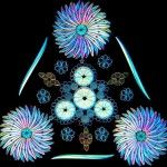 Contemporary Artistic Arrangements of Microscopic Diatoms by Klaus Kemp