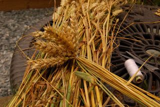 Auntie Anne's extremely useful stuff: How to make a corn dolly