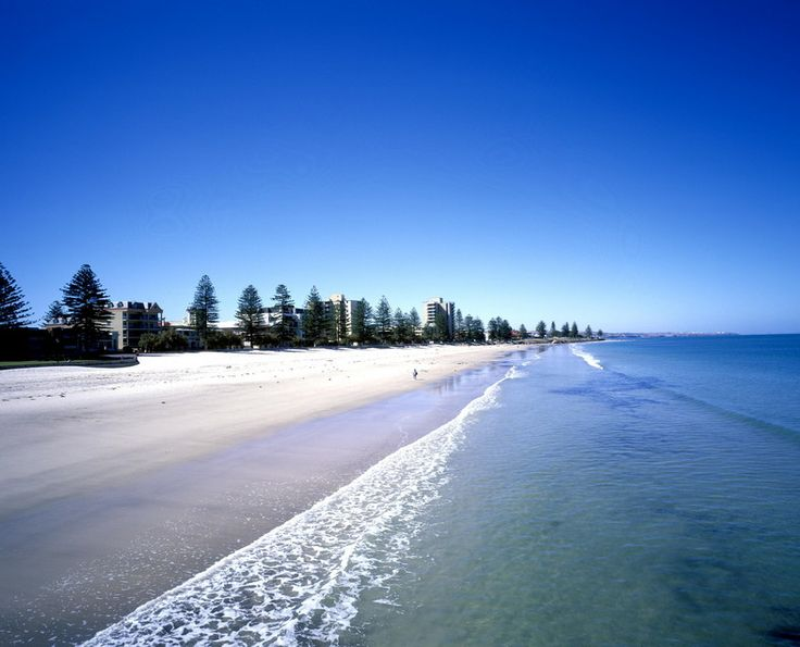Glenelg beach, Adelaide South Australia - I love the trees here & there's…
