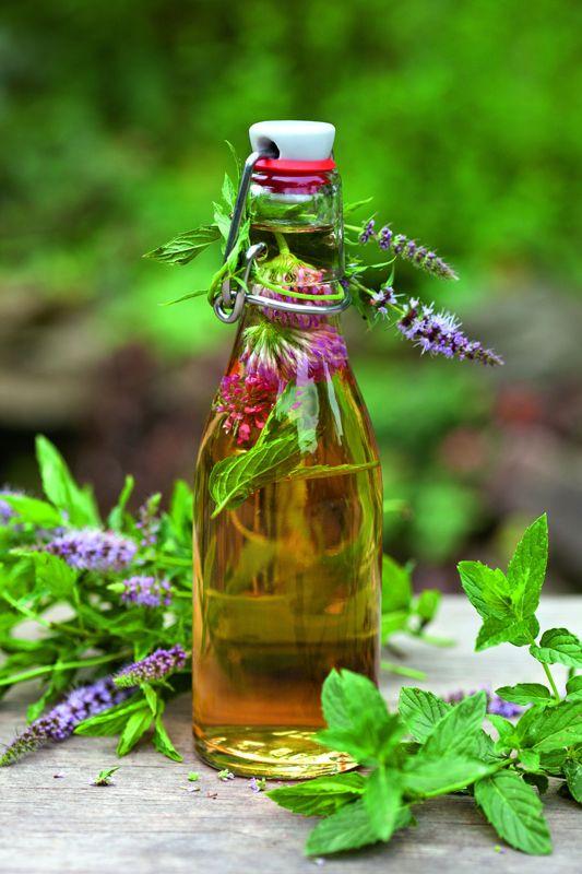 """Viel hervorragende Rezepte für """"Pflanzengeister"""" und Liköre wurden in den Klöstern entwickelt. Wer selbst wohltuende und wirksame Elixiere herstellen möchte ,kann auf eine ganze Menge bewährter Rezepturen zurückgreifen ... drei besondere stellen wir Ihnen hier vor."""