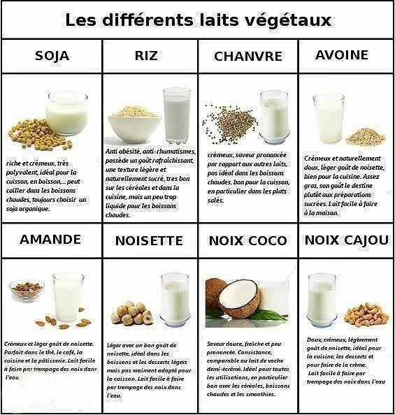 Laits végétaux : soja _ riz _ chanvre _ avoine _ amande _ noisette _ noix de coco _ noix de cajou