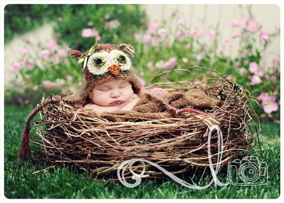 Newborn - LOVE the nestBaby Inspiration, Owls Hats, Baby Pics, Baby Birdie, Babies Pics, Owls Theme, Baby Luv, Adorable Baby, Baby Scarlett