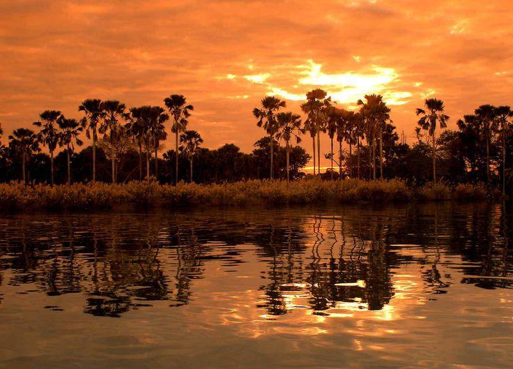 Coucher de soleil sur la rivière Shire #malawi