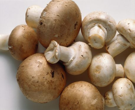 Strange Foods With Anti-Aging and Health Claims: Mushrooms - Fungus for Health