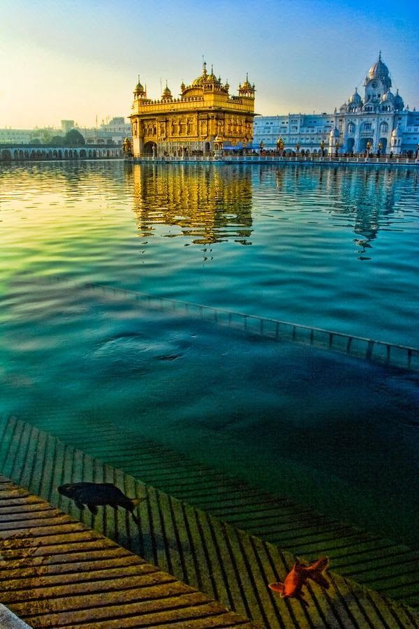 Golden Temple, Amrit photo expression