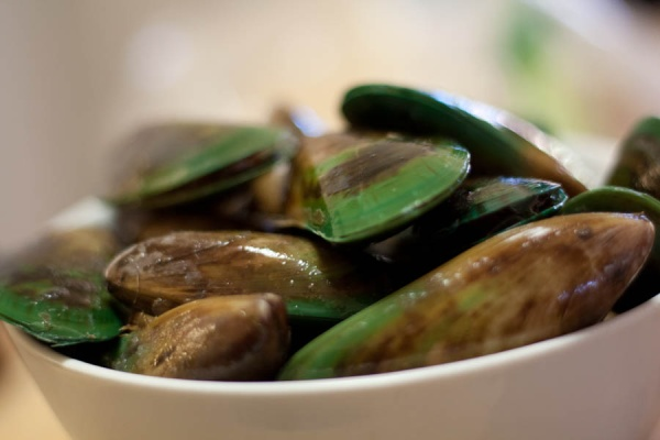 Famous Green-Lipped Mussels from New Zealand.