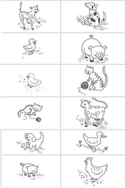 domácí zvířata a jejich mláďata - Hledat Googlem