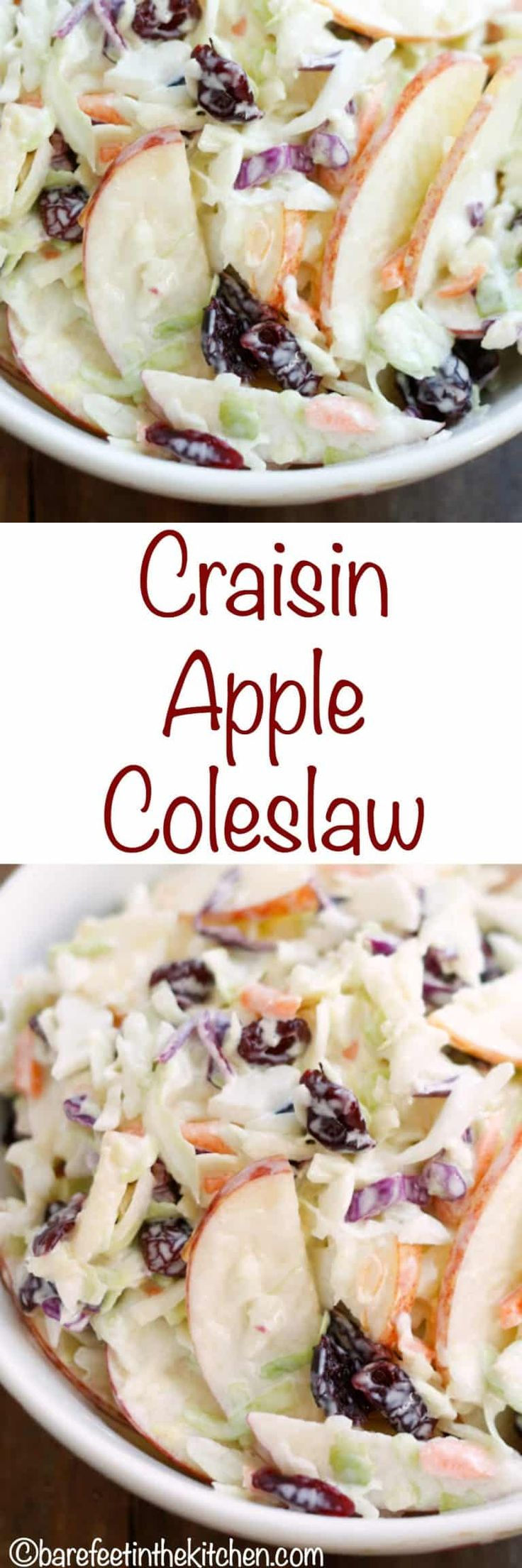 Sweet apples and cranberries are combined with crunchy cabbage and then tossed together in a tangy lemon dressing to make this Cranberry Apple Coleslaw. - get the recipe at barefeetinthekitchen.com