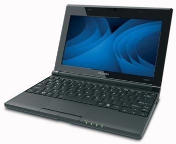 Toshiba 10.1-Inch Netbook (Blue) Auction