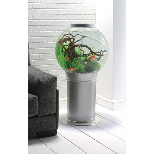 biorb aquarium | Aquarium BiOrb 105 Silver - Botanic - 060 Aquariophilie