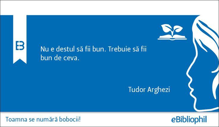 """""""Nu e destul să fii bun. Trebuie să fii bun de ceva."""" Tudor Arghezi"""