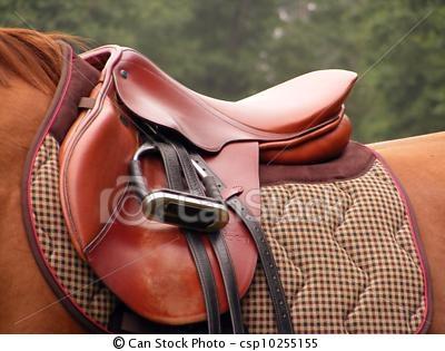Beautiful English Saddle with snappy gingham saddle cloth!
