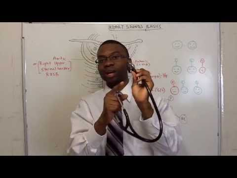 LEARN HEART SOUNDS IN 20 MINUTES!!! - YouTube This guy is super fun - love him.