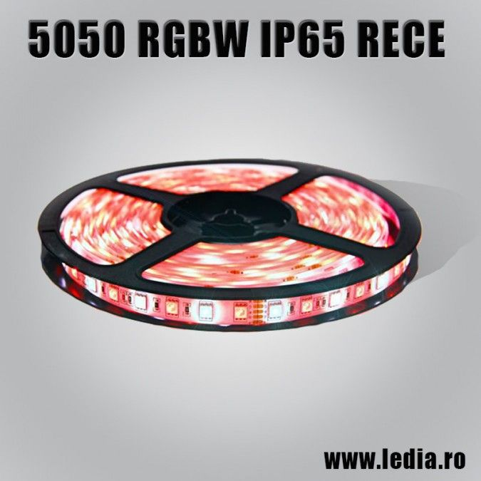 BANDA LED RGBW  5050 ALB RECE IP65