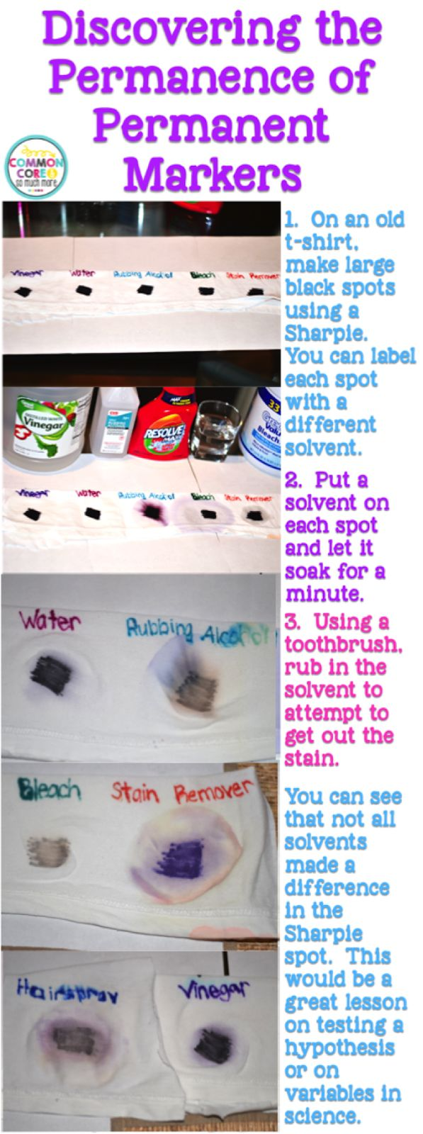 Sharpie Science- great experiment for testing out your hypotheses and variables!  Two other cool experiments shown in post, too.