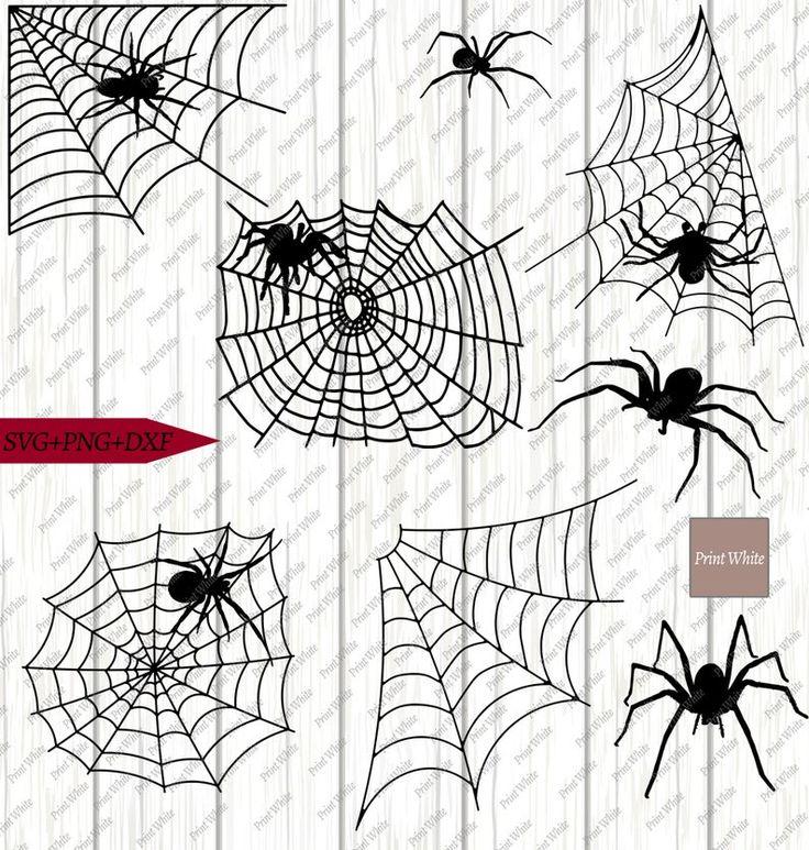 Printwhite Pinterest Pin Spiders Svg Png Dxf Tarantula Cut File Spider Web Clipart Etsy Pinvibe Com