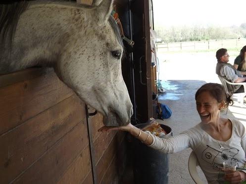 Il Cavallo e il Galateo, Lezione num. 1: il baciamano