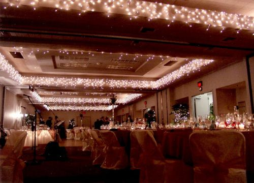 With A Flip Of Switch You Can Add Sparkle To Your Wedding Reception Or Holiday