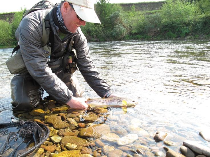 9 best River Usk, Wales images on Pinterest