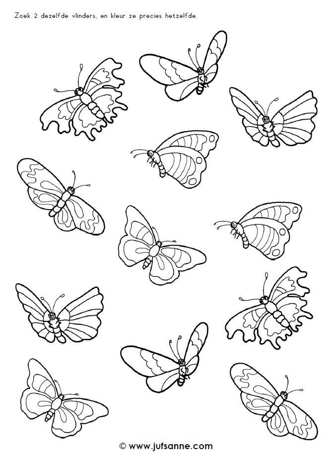 Zoek twee dezelfde vlinders en kleur ze precies hetzelfde [jufsanne.com]