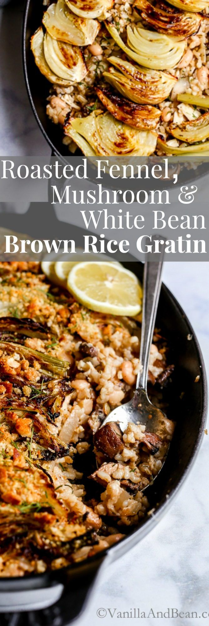 Topped with lemony dijon parmesan breadcrumbs, Roasted Fennel, Mushroom and White Bean Brown Rice Gratin is a hearty vegetarian main.