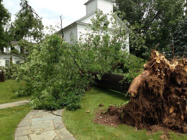 Jeff Ebert sent us this shot of damage in New Providence, NJ; NWS is evaluating whether a tornado struck. 7.1.13