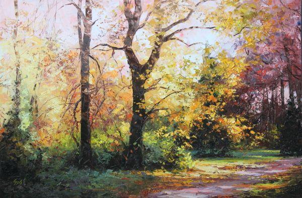ősz, napsütés, színes lombok