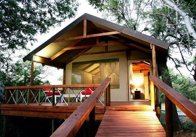 'n Glanstent-boomhuis! Lion Tree Top Lodge bied die ideale, luukse bos-ervaring.
