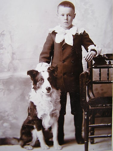 Vintage Cabinet Photo Card Sweet Young Boy with Collie Dog Charlotte Michigan