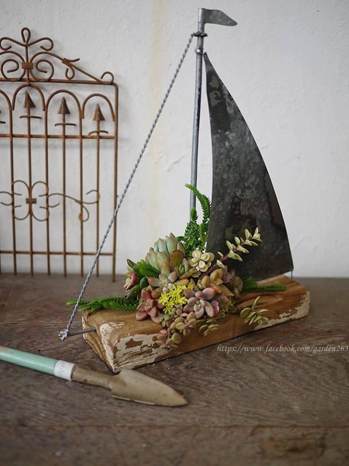 Succulent sailboat- too cute!