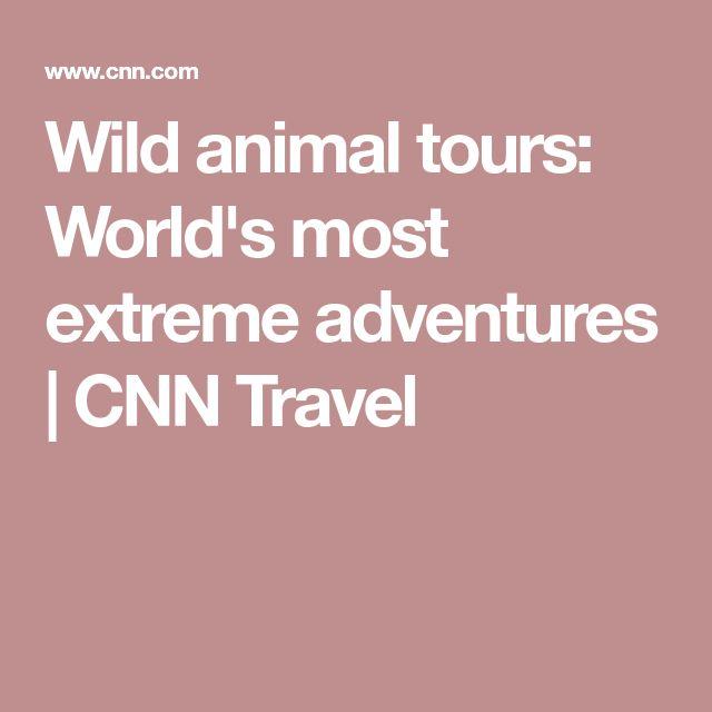 Wild animal tours: World's most extreme adventures | CNN Travel