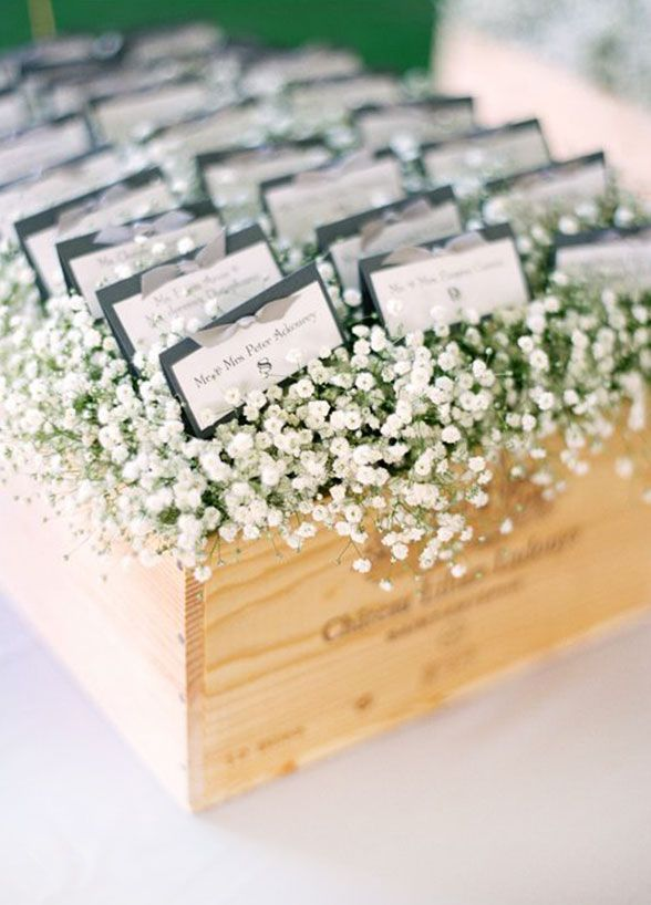 Escort Cards: Add an elegant accent to your escort card display with a fluffy bed of baby's breath.