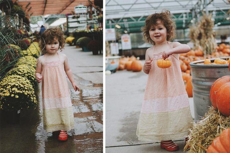Picking pumpkins for Halloween
