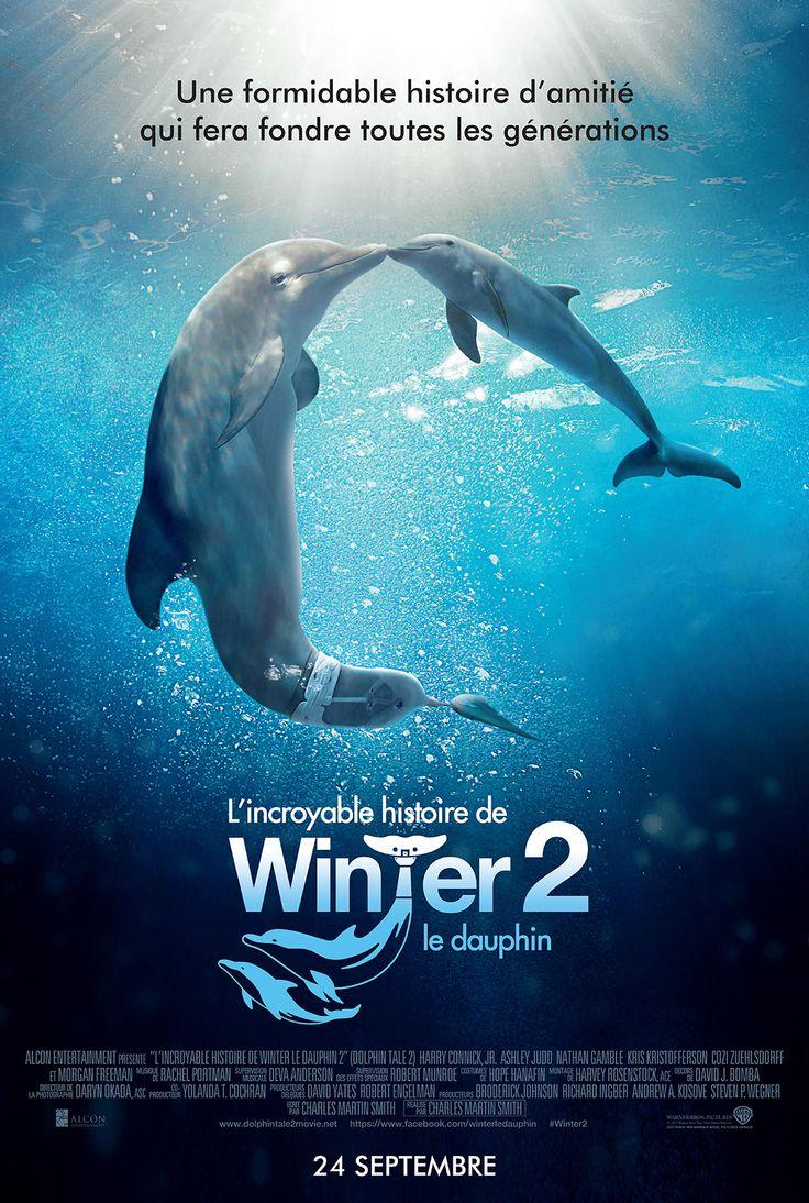 L'Incroyable Histoire de Winter le dauphin 2—-Winter s'est parfaitement habitué à sa nouvelle prothèse de queue. Malheureusement, Panama, la mère de substitution de Winter, meurt de vieillesse, laissant le dauphin sans co…