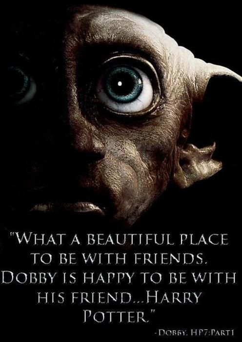 What A Beautiful Place To Be With Friends Dobby Is Happy To Be With His Friend Harry Potter
