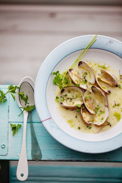 clams in a light fennel and shallot broth - food photography