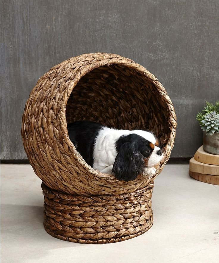 The Plantana Pet Bed - A Luxurious Bed For Sweet Fur Babies