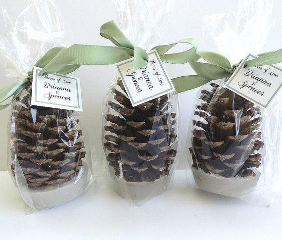 100 Pine Cone Fire Starter Winter Wedding Favors  by NatureFavors