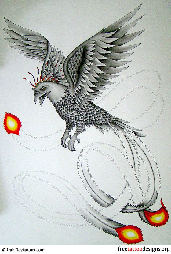 1000 ideas about phoenix tattoo design on pinterest phoenix drawing phoenix and phoenix tattoos. Black Bedroom Furniture Sets. Home Design Ideas