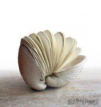 Записная книжка в ракушке