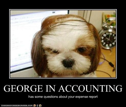 accounting meme Accounting with George