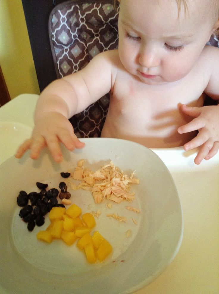 Meals Ideas For One Year Old