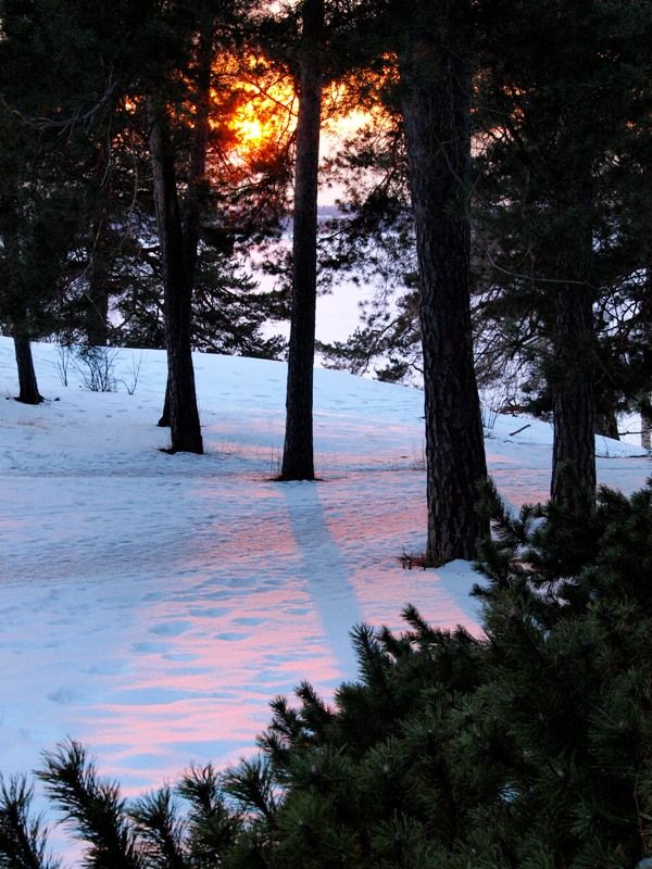 Sun reflection on the snow - Munkkiniemi, Helsinki - Finland