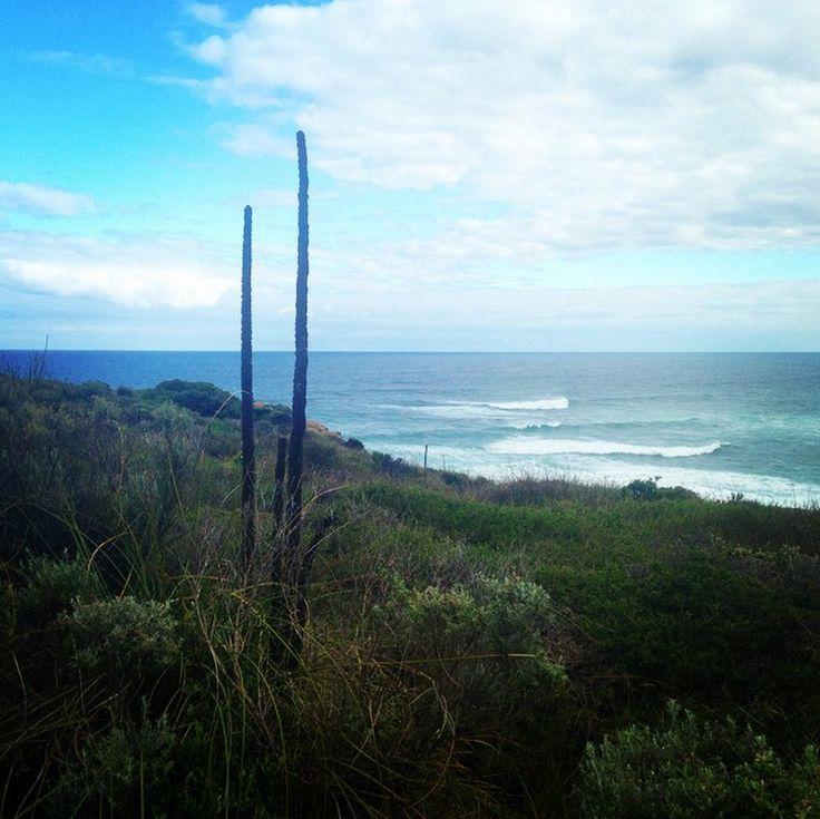 Cape To Cape Walking Track