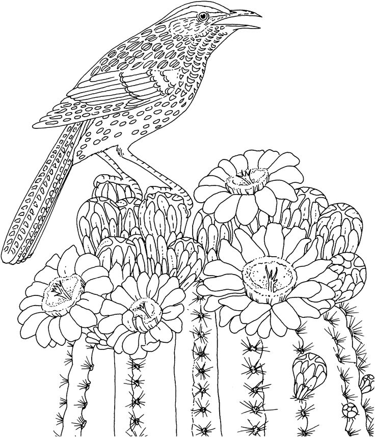 hard coloring pages bird on flowers Coloring Pages