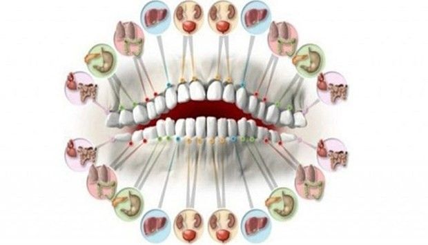 People should definitely pay attention to their teeth because they can point to certain problems with the organs. In the opinion of many experts...
