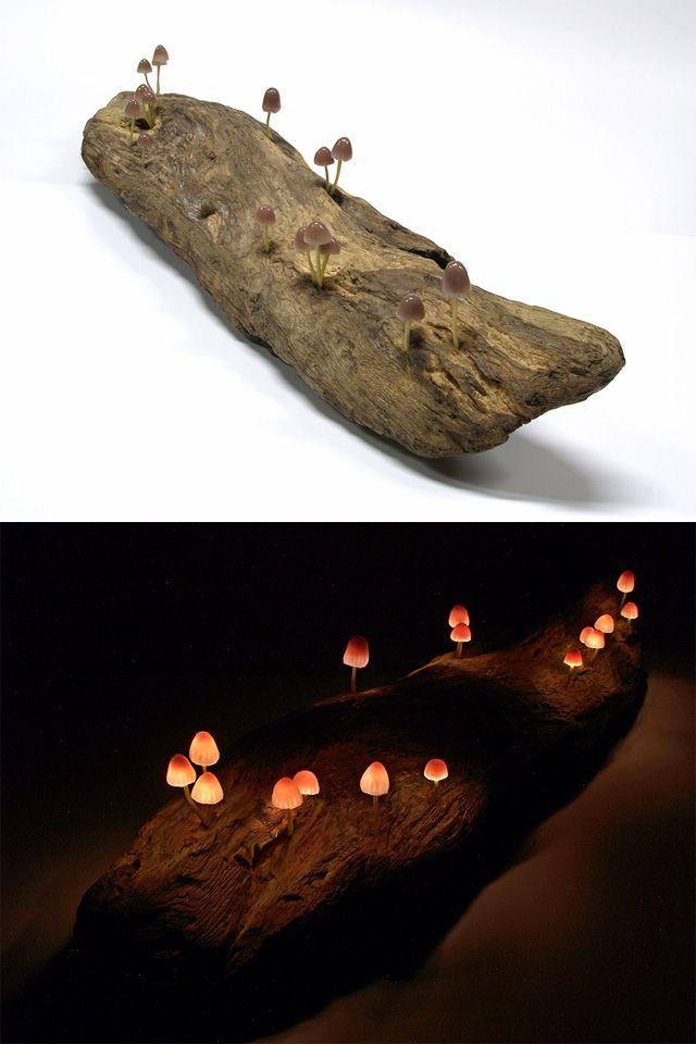 LED Mushroom Lights by Yukio Takano  http://www.thisiscolossal.com/2013/02/led-mushroom-lights-by-yukio-takano