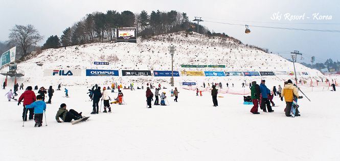 Winter Korea With Jeju Island 08H/06M | Price : 20, 26, 27 Dec $1946 | Where to go: Jeju , Nami Island , Incheon , Mt. Sorak , Seoul